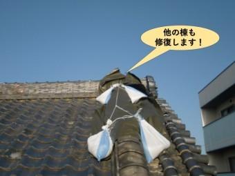 岸和田市の他の棟も修復します!