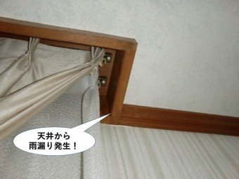 和泉市の1階の天井から雨漏り発生