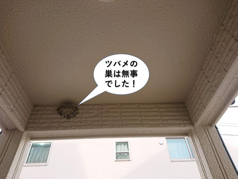 岸和田市のツバメの巣は無事でした