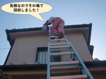 岸和田市の瓦が危険なのでその場で回収しました