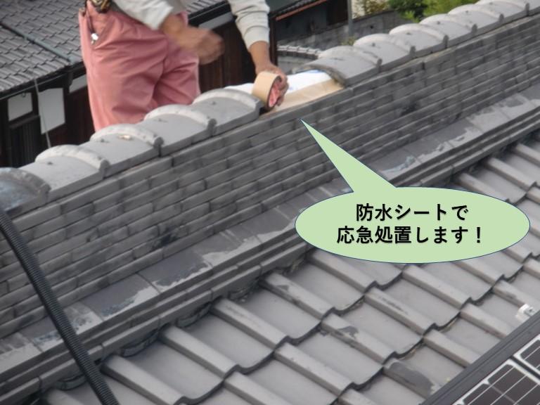 岸和田市の大屋根の棟に防水シートで応急処置