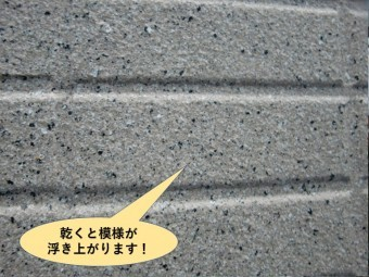 泉大津市の塗料が乾くと模様が浮き上がります