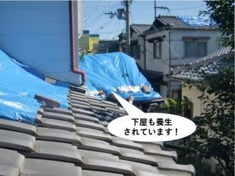 貝塚市の下屋も養生されています
