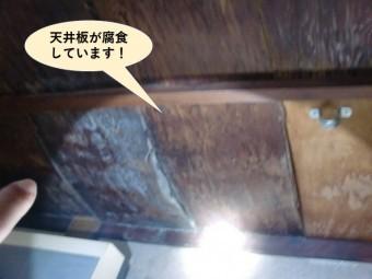 岸和田市の天井板が腐食しています