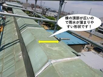 岸和田市の棟の頂部が広いので雨水が溜まりやすい形状です