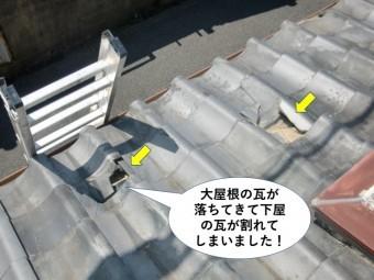 泉佐野市の大屋根の瓦が落ちてきて下屋の瓦が割れてしまいました