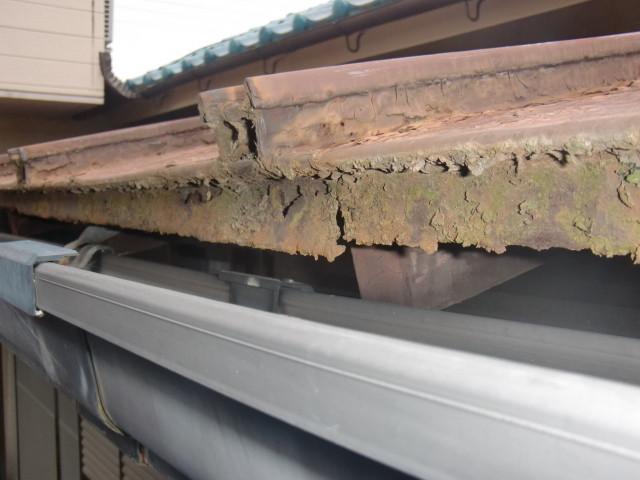 岸和田市野田町の既存カラー鋼板瓦棒葺き