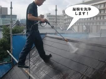 和泉市の屋根を洗浄