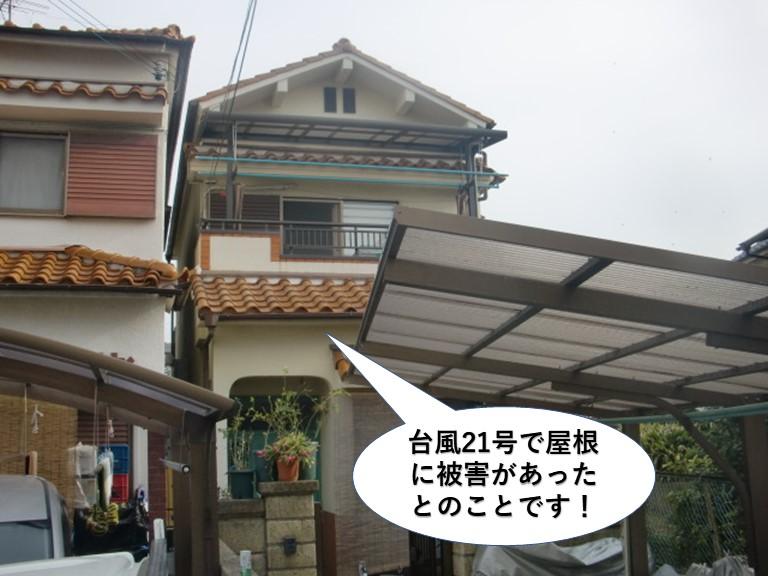 泉南市の台風被害の現地調査