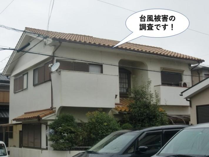 和泉市の台風被害の現地調査