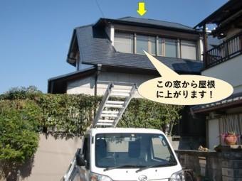 岸和田市の台風被害の現地調査