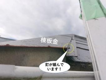 忠岡町の棟板金を固定している釘が緩んでいます