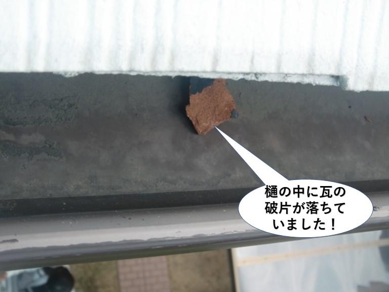 泉南市の樋の中に瓦の破片が落ちていました!