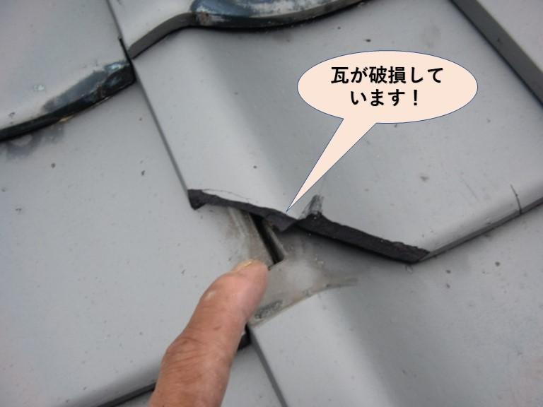 岸和田市の屋根の瓦が破損しています