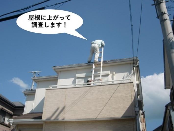 熊取町の屋根に上がって調査します