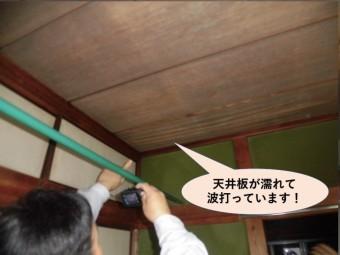 岸和田市の天井板が濡れて波打っています
