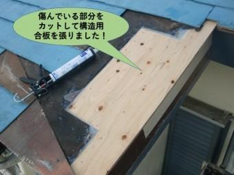岸和田市の屋根の傷んでいる部分をカットして構造用合板を張りました