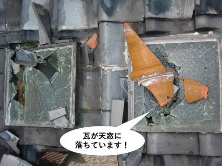 岸和田市の瓦が天窓に落ちています