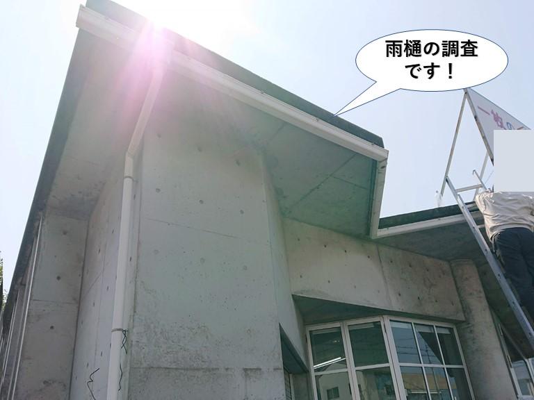 泉大津市の雨樋のご相談