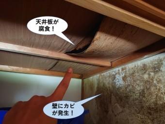 泉大津市の天井板が腐食