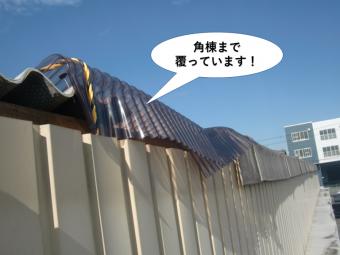 和泉市の角棟まで覆っています