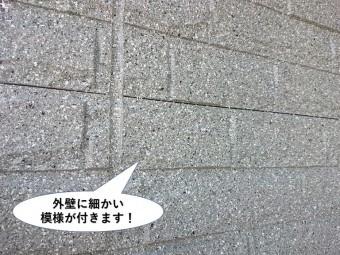 忠岡町の外壁に細かい模様が付きます