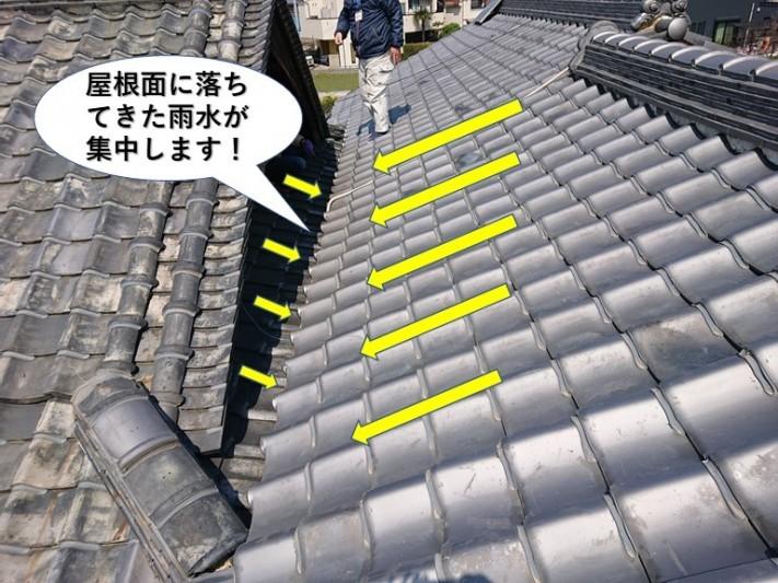岸和田市の屋根面に落ちてきた雨水が集中します