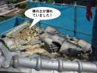 泉佐野市の瓦をめくると棟の土が濡れていました