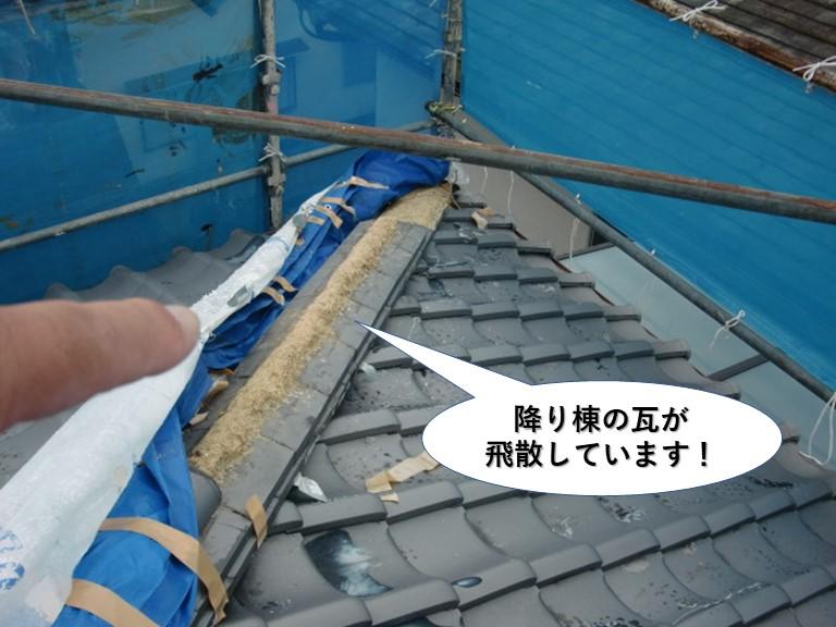 泉大津市の降り棟の瓦が飛散しています