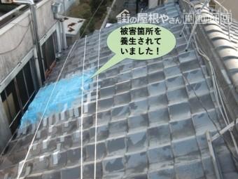 岸和田市の屋根の被害箇所を養生されていました