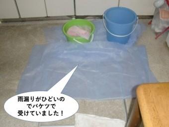 岸和田市で雨漏りがひどいのでバケツで受けてました